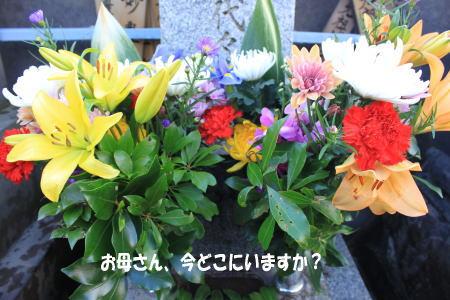 20110102_1.jpg