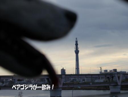 20110102_4.jpg