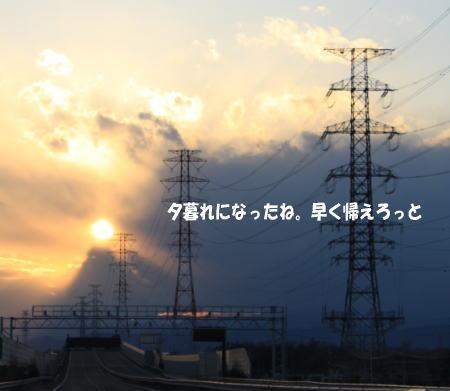 20110104_7.jpg