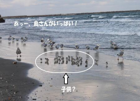 20110109_4.jpg
