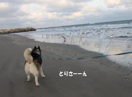 20110109_5.jpg