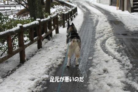 20110215_3.jpg
