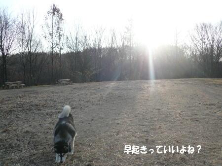 20110226_3.jpg