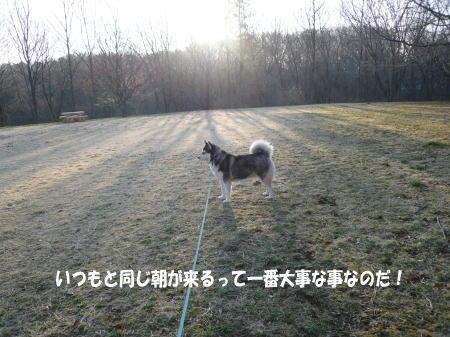 20110403_2.jpg