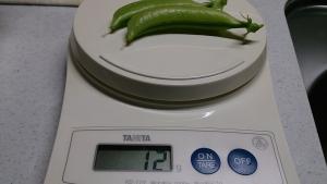 2013-12-11 スナップえんどう収穫