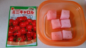 2013-12-03 ミニキャロル 種蒔き