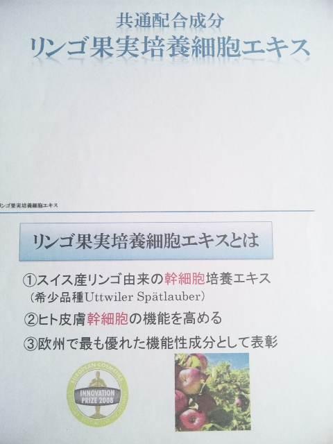 110528_12591611.jpg