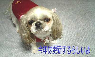 DVC00134.jpg