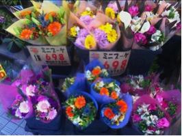 fc2blog_201301271405207b5.jpg