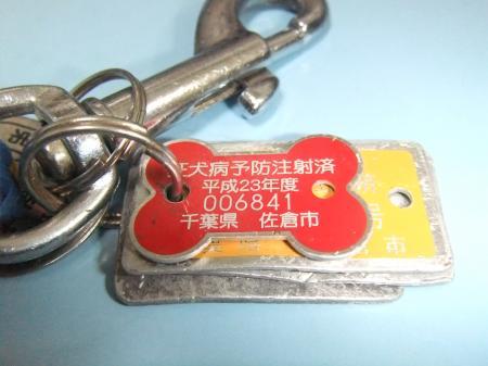 20120412鑑札05