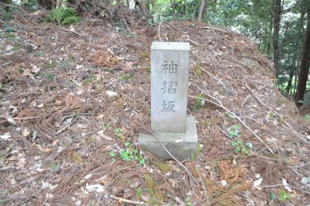 20120417小篠塚城址16