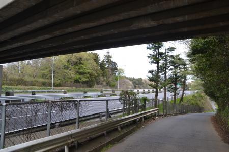 20120417小篠塚遊歩道09