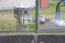 20120417小篠塚遊歩道16