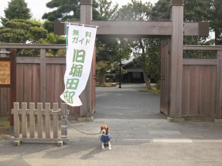 20110421散歩06
