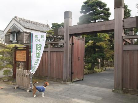 20110421散歩05