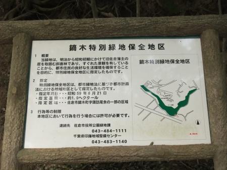 20110421散歩16