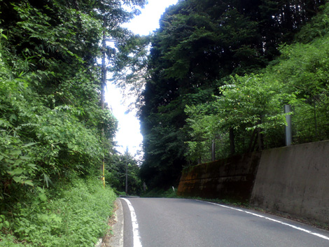 20110813_5