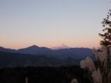 朝日を受けた富士山