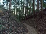 快適な下山道