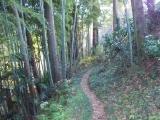 弁天橋への山道