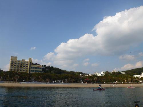 20111113_091.jpg