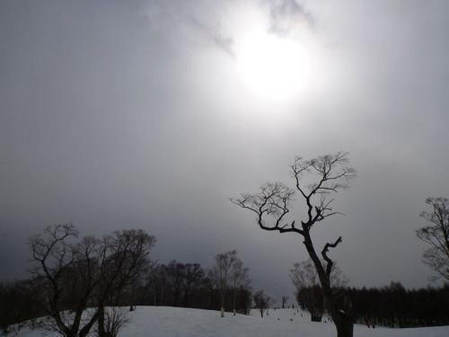 20120311_009.jpg