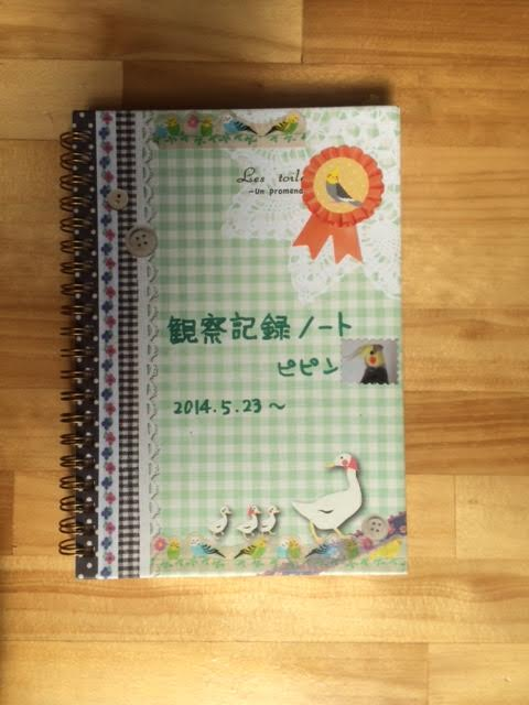 ピピンちゃん観察ノート