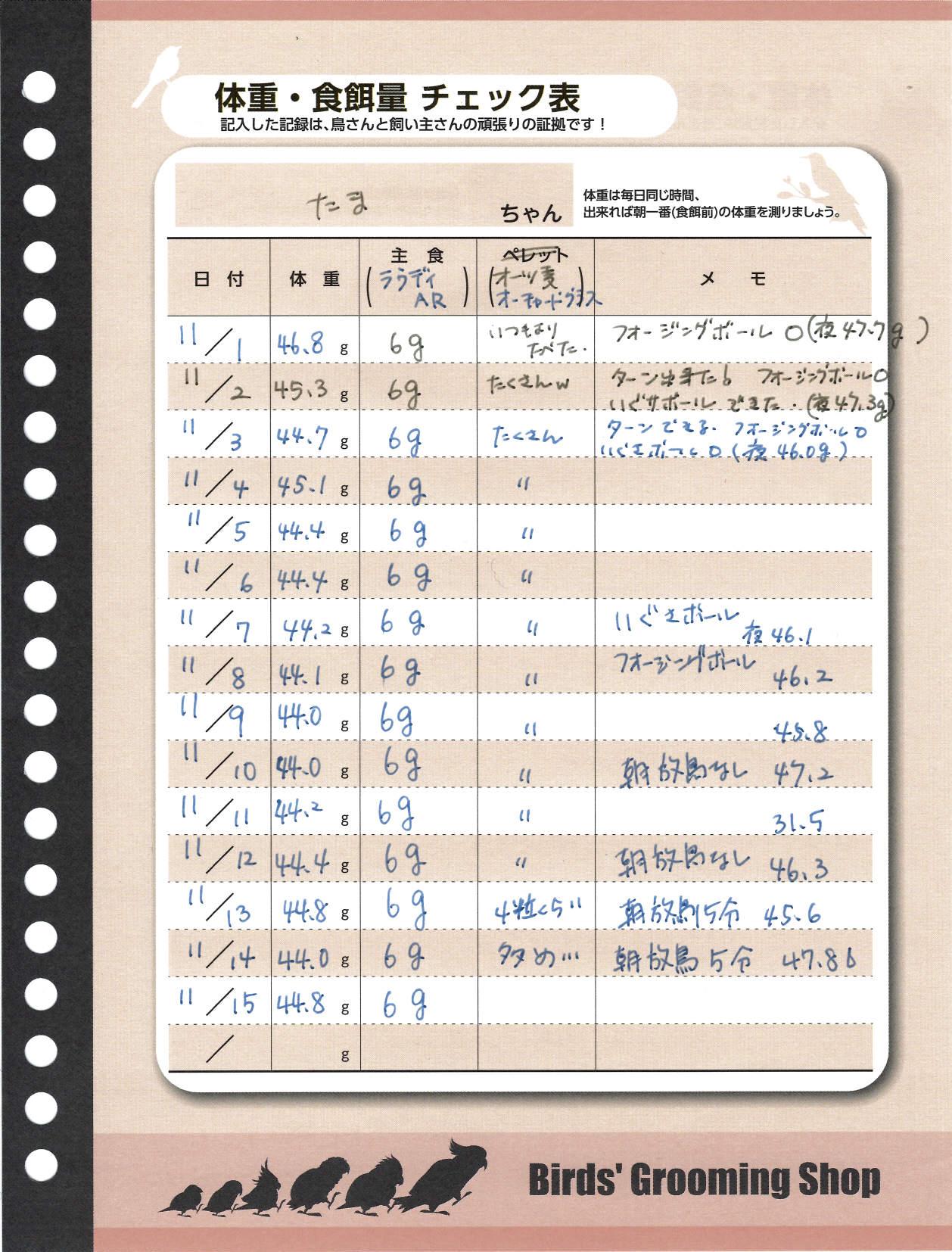 たまちゃんダイエット記録用紙20141115