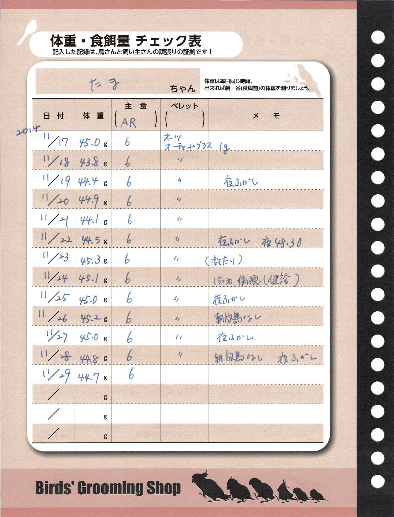 たまちゃんダイエット記録用紙20141129-1