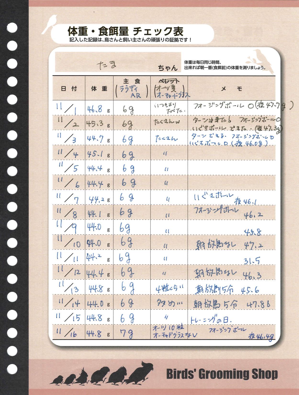 たまちゃんダイエット記録用紙20141129-2