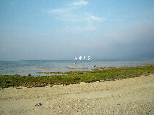 IMGP0565のコピー