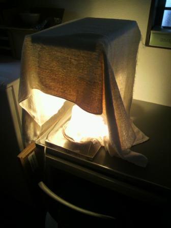ツバメの卵in保温機