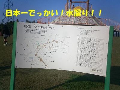 CIMG3299.jpg