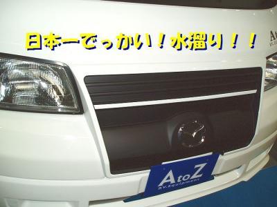 P3120005.jpg