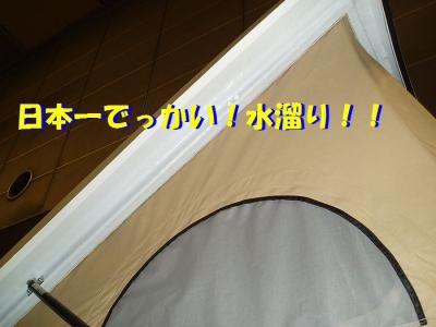 P3120011.jpg