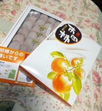 13 2 2 ichidagaki (2)
