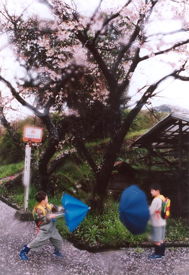 桜地蔵.jpg