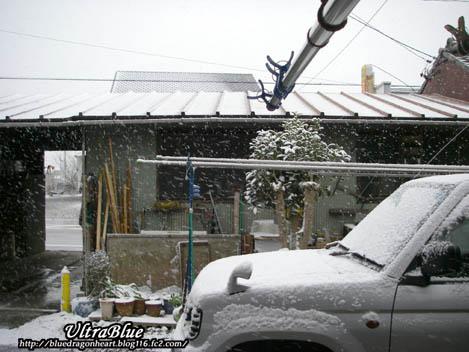 20110116_初雪