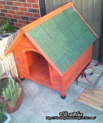 20120128_犬小屋