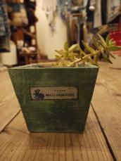 聖林インポート WOOD PLANT BOX