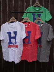 HRM BIG H ジャーニーS/T