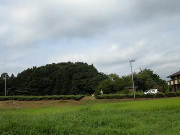 DSCN6985.jpg