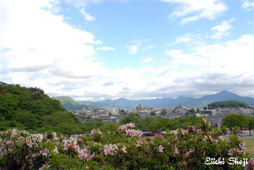 20100514-SHO_0012.jpg