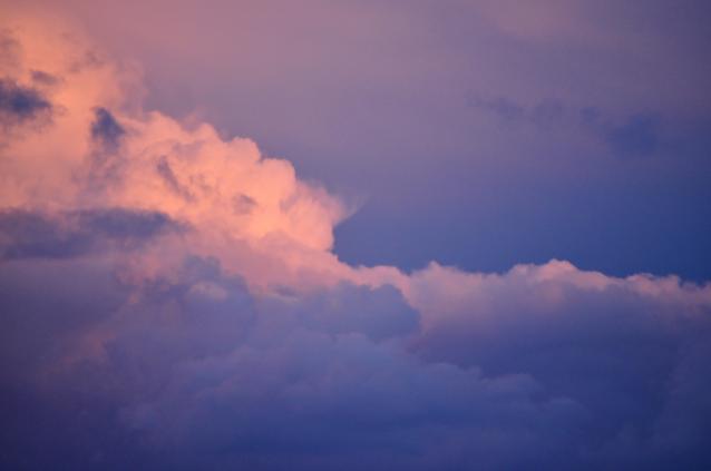 After rain-03