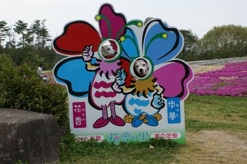 花夢の里ロクタン 03