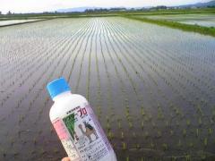 除草剤09_600