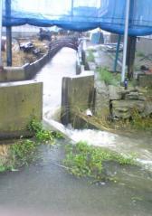 水害40_600