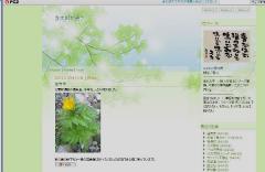 新緑テンプレ00_600