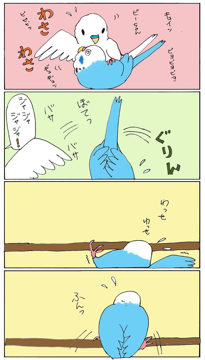 鳥の子作り1