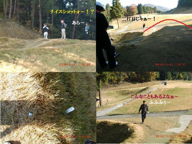 5_20101121214940.jpg